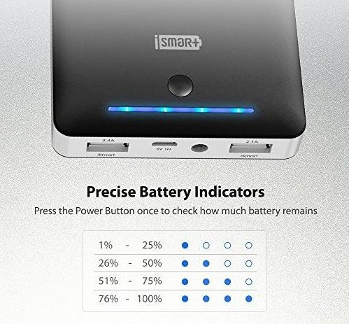 RAVPower 16750 indicator